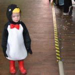 Kinderkarneval 2015  116